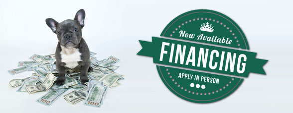 Click here to apply for Instant Financing!!